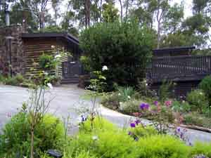 Sunway Farm B and B and Tours - Accommodation Coffs Harbour