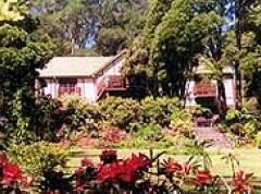 Delvin Health Retreat - Accommodation Coffs Harbour