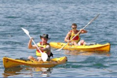 Manly Kayaks - Accommodation Coffs Harbour