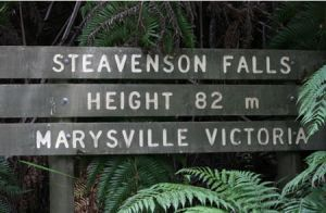 Stevensons Falls - Accommodation Coffs Harbour