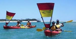 Kayak Noosa - Accommodation Coffs Harbour