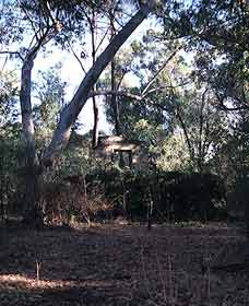 Ghost House Walk Trail Yanchep National Park