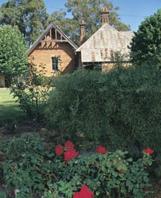 Heritage Rose Garden - Accommodation Coffs Harbour