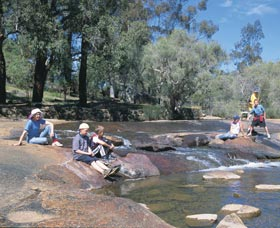 John Forrest National Park - Accommodation Coffs Harbour