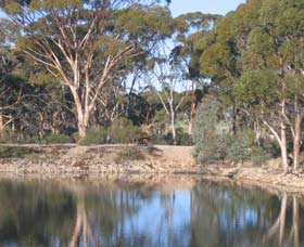 Merredin Railway Dam - Accommodation Coffs Harbour
