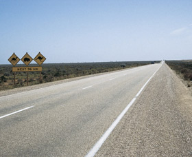 Eyre Highway - Accommodation Coffs Harbour
