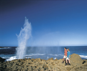 The Blowholes Carnarvon - Accommodation Coffs Harbour