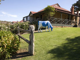 Longview Vineyard - Accommodation Coffs Harbour