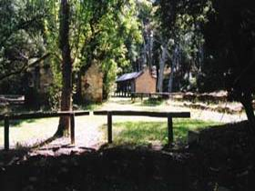 Wirrabara Forest Reserve - Accommodation Coffs Harbour