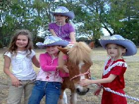 Amberainbow Pony Rides - Accommodation Coffs Harbour