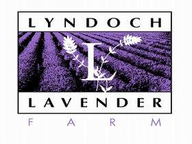 Lyndoch Lavender Farm and Cafe - Accommodation Coffs Harbour