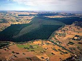 Mount Crawford Forest Reserve - Accommodation Coffs Harbour