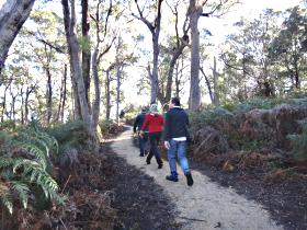 Bridport Walking Track - Accommodation Coffs Harbour
