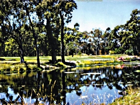 Smithton Country Club - Accommodation Coffs Harbour