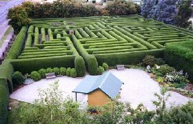 Westbury Maze and Tea Room - Accommodation Coffs Harbour