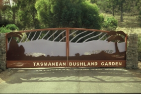 Tasmanian Bushland Garden - Accommodation Coffs Harbour