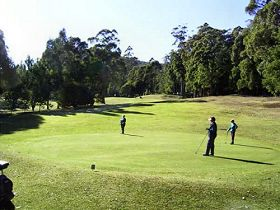 Sheffield Golf Course - Accommodation Coffs Harbour