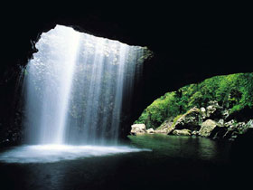 Natural Bridge Springbrook National Park - Accommodation Coffs Harbour