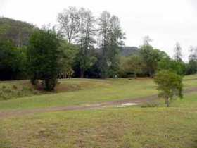 Brooyar State Forest - Accommodation Coffs Harbour