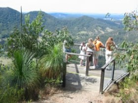 Mapleton Forest Reserve - Accommodation Coffs Harbour