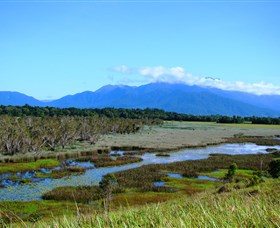 Eubenangee Swamp National Park - Accommodation Coffs Harbour