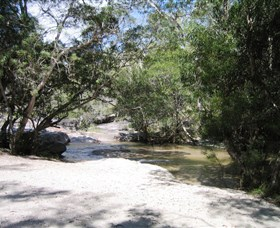 Davies Creek National Park and Dinden National Park - Accommodation Coffs Harbour