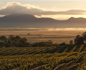 Montara Wines - Accommodation Coffs Harbour
