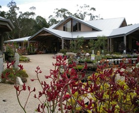 Kuranga Native Nursery and Paperbark Cafe - Accommodation Coffs Harbour
