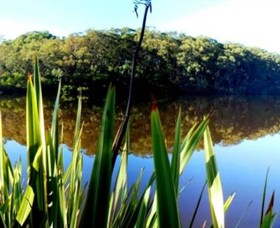 Aura Vale Lake Park - Accommodation Coffs Harbour