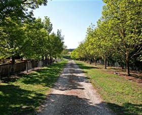 Waybourne Winery - Accommodation Coffs Harbour