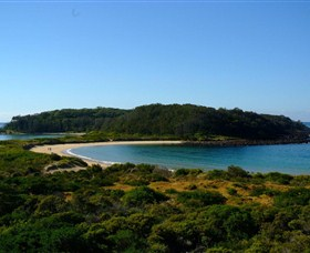 Broulee Island Walk - Accommodation Coffs Harbour