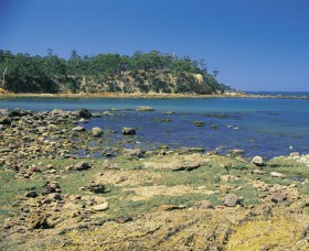 Aslings Beach - Accommodation Coffs Harbour