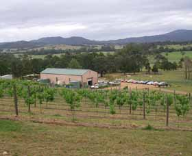 Villa d Esta Vineyard - Accommodation Coffs Harbour