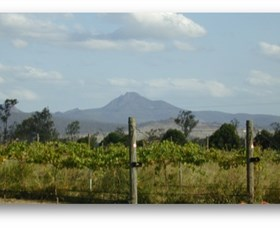 Ironbark Ridge Vineyard - Accommodation Coffs Harbour