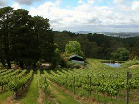 Arranmore Wines - Accommodation Coffs Harbour