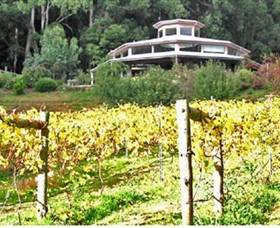 Peveril Vineyard/Beechy Berries - Accommodation Coffs Harbour