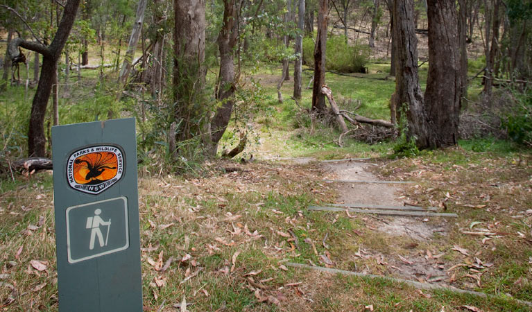 Moolarben picnic area - Accommodation Coffs Harbour