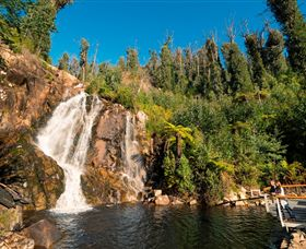 Steavenson Falls Marysville - Accommodation Coffs Harbour
