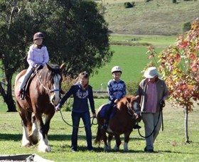 Bathurst Farm Experience - Accommodation Coffs Harbour