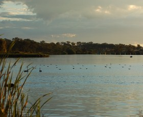 Lake Inverell Reserve - Accommodation Coffs Harbour