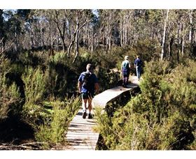 Hume and Hovell Walking Track - Henry Angel Trackhead - Accommodation Coffs Harbour