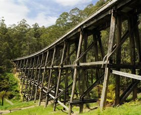 Noojee Trestle Bridge - Accommodation Coffs Harbour