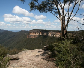 Kanangra-Boyd National Park - Accommodation Coffs Harbour