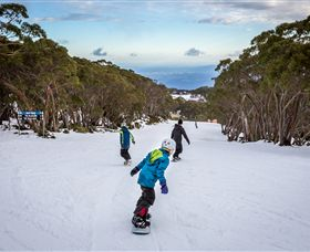 Mt Baw Baw Alpine Resort - Accommodation Coffs Harbour