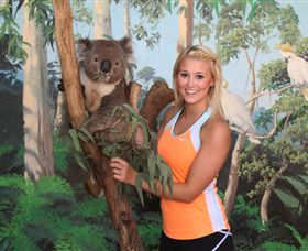 Maru Koala and Animal Park - Accommodation Coffs Harbour