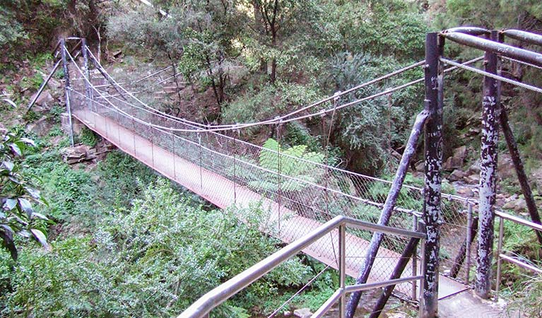 Jenolan River walking track - Accommodation Coffs Harbour