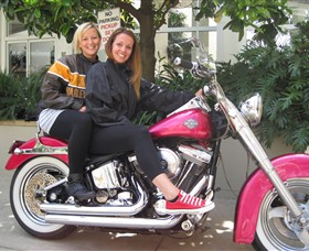 Wild Ride Harley and Motorcycle Tours - Accommodation Coffs Harbour