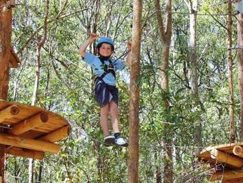 TreeTops Newcastle - Accommodation Coffs Harbour