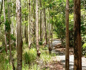 Hallorans Hill Conservation Park - Accommodation Coffs Harbour