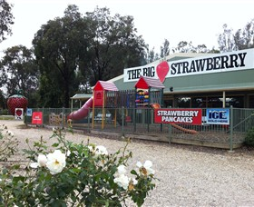 The Big Strawberry - Accommodation Coffs Harbour